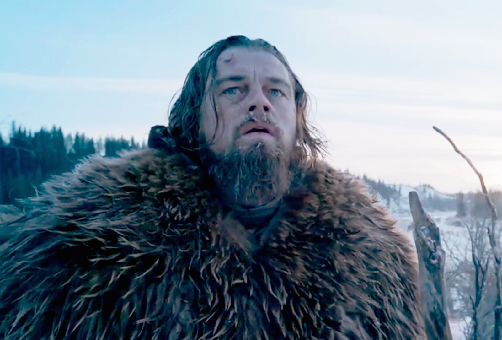 The Revenant (Credit: 20th Century Fox)
